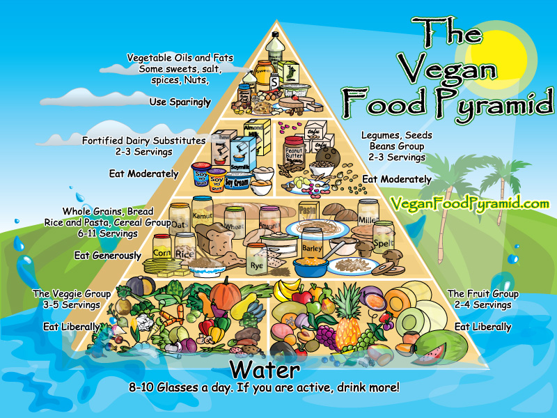 https://www.rawlifehealthshow.com/wp-content/uploads/2013/12/the-vegan-food-pyramid.jpg