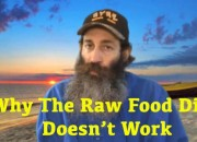 why the raw diet doesn't work