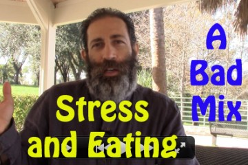 03-stress and eating